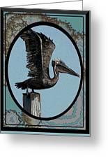 Pelican Paradise Greeting Card