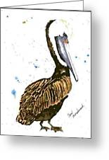 Pelican Pete Greeting Card