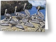 Pelican Rock Greeting Card