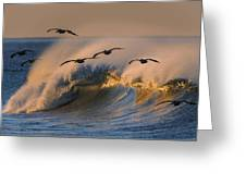 Pelicans And Wave 73a2308-2 Greeting Card