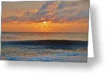 Pelicans At Sunrise 9 10/18 Greeting Card