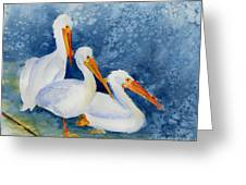 Pelicans At The Weir Greeting Card by Pat Katz