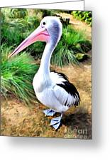 Pelicans Pride Greeting Card by Shannon Rogers