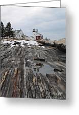 Pemaquid 8263 Greeting Card