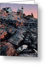Pemaquid In Early Morning Light Greeting Card