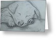 Pencil Puppy Greeting Card
