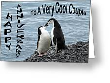 Penguin Anniversary Card Greeting Card