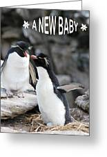 Penguin New Baby Card Greeting Card