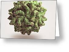 Penicillium Stoloniferum Virus Greeting Card