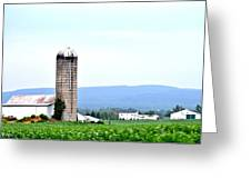 Pennsylvania Farms Greeting Card