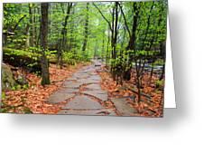 Pennsylvania Hiking Trail Greeting Card