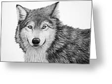 Pensive Wolf Greeting Card by Lorraine Foster