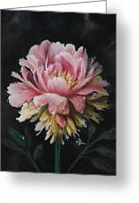 Peony Greeting Card by Lynette Yencho