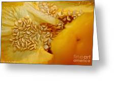 Pepper Reproduction Greeting Card
