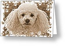 Peppie 1 Greeting Card