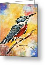 Perched Kingfisher Greeting Card