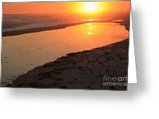 Perdido Key Reflections Greeting Card