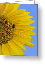 Perfect Half With Blue Sky Greeting Card