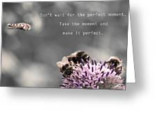 Perfect Moment Greeting Card