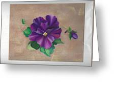 Perfect Pansy Greeting Card