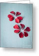 Perfect Petals Greeting Card