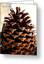 Perfect Pinecone Greeting Card