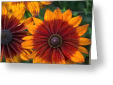 Perfection In Red And Orange Greeting Card