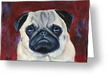 Perfectly Pug Greeting Card