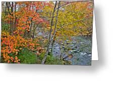 Perkiomen Creek - Perkiomenville Pa - Autumn Foliage Greeting Card
