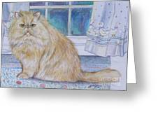 Persian Cat In Kitchen Greeting Card