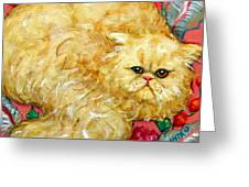 Persian Cat On A Cushion Greeting Card