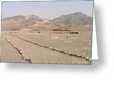Peru Nazca Bones Site Greeting Card