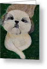 Pet Dog Greeting Card by Kat Poon