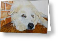 Pet Portrait Great Pyrenees Original Oil Painting On Canvas 10 X 10 Inch Greeting Card