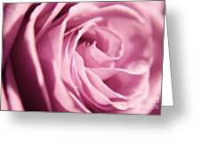 Petal Folds Greeting Card