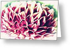 Petaled Greeting Card