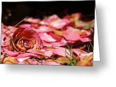 Petals 2 Greeting Card