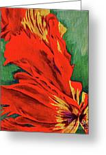 Petals Of Fire Two Greeting Card