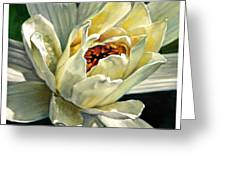 Petals Of Ivory Greeting Card