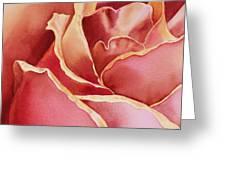 Petals Petals I Greeting Card