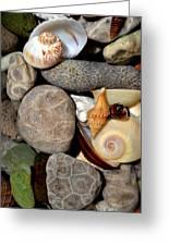 Petoskey Stones Ll Greeting Card