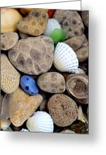 Petoskey Stones V Greeting Card