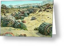 Petrified Forest Greeting Card