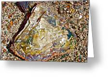Petrified Wood In Crystal Forest In  Petrified Forest National Park-arizona Greeting Card