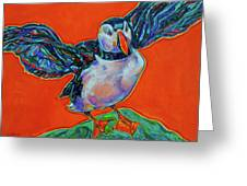 Petty Harbour Puffin Greeting Card