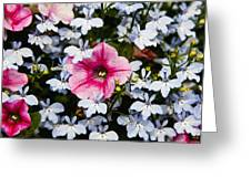 Petunia And Friends Greeting Card