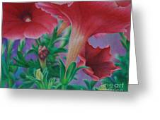 Petunia Skies Greeting Card