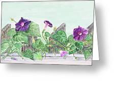 Petunias On The Fence Greeting Card