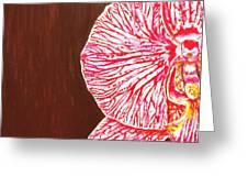 Phalaenopsis Exposed Greeting Card