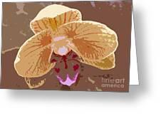 Phalaenopsis Synopsis Greeting Card